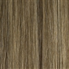 Hairaisers Supermodel 14 Inches Colour P14/24 Clip In Human Hair Extensions
