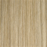 Hairaisers Supermodel 14 Inches Colour P22/SB Clip In Human Hair Extensions