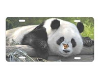 Panda Bear personalized novelty front license plate decorative car tag