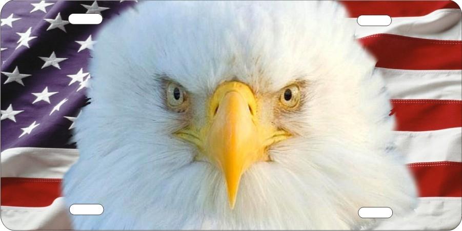 American Eagle Bold Head Eagle On American Flag Patriotic