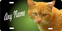 personalized novelty license plate orange tabby cat car tag Custom License Plates, Personalized License Plates, Decorative License Plates, Front License Plates, Car Tags, airbrush