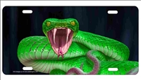 Snake viper novelty front license plate decorative Personalized vanity car tag