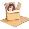 "LP 12"" Vinyl Record Box"