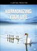 Harmonizing Your Life - DVD
