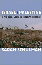 Israel/Palestine and the Queer International - Book