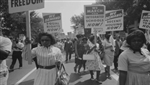 Reflections Unheard: Black Women in Civil Rights DVD