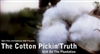 The Cotton Pickin Truth Still On The Plantation-DVD
