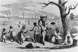 How Slavery Shaped the USA - 4 DVD Set