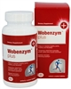 Wobenzym Plus Systemic Enzymes 240 Tablets