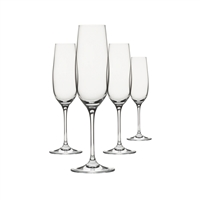 Shatterproof Champagne Drinkware, Set of 4