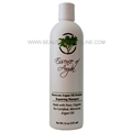 Essence of Argan Argan Oil Shampoo 12 oz