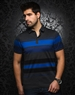 Designer Charcoal Stripe Polo
