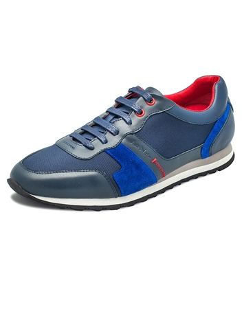 Trendy Designer Navy Royal Sneakers