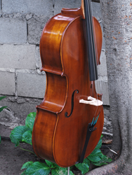 Eastman model 315 'Stradivarius' 1/2 Cello