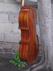 Eastman Advanced Series model 405 'Stradivarius' 3/4 Cello