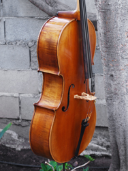 Unlabeled 3/4 Cello