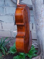 Eastman Advanced Series model 305 'Stradivarius' 7/8 Cello