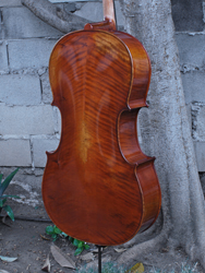 Eastman Advanced Series model 405 'Stradivarius' 7/8 Cello