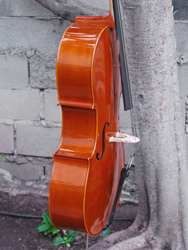 Angel Taylor model 120 7/8 Cello