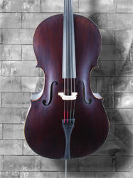 Angel Taylor model 220 7/8 Cello (b)