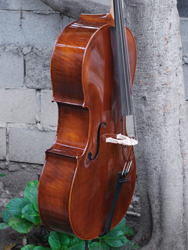 Angel Taylor model 320 7/8 Cello