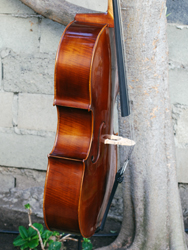 Alessandro model 220 7/8 Cello