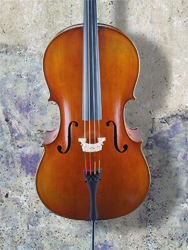 Vivo Limited Edition 'Stradivari' 7/8 Cello