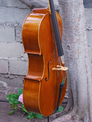 Calin Wultur 'Apprentice' Stradivari - 4/4 Cello