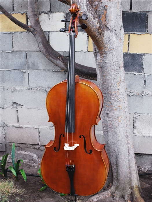 Antonio Fiorini model 650 'Strad' Cello