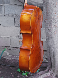 Lothar Semmlinger Cello