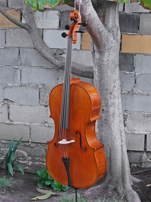 Cello - Scott Cao STC 750E copy of G. B. Guadagnini 1777