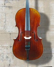 Vivo model 150E Guadagnini 1777 Replica 4/4 Cello