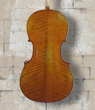 Vivo L Maestro 'Strad' 4/4 CELLO