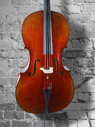 Vivo Limited Edition 'Stradivari' 4/4 Cello (b)