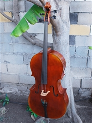 Vivo Limited Eurowoods 'Stradivari' 4/4 Cello