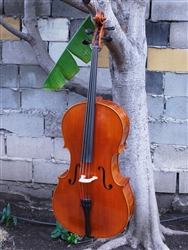 Vivo 'Mirecourt' - 4/4 Cello - Used