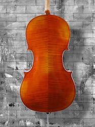 Vivo 'Prelude' Strad - 4/4 Cello (a)