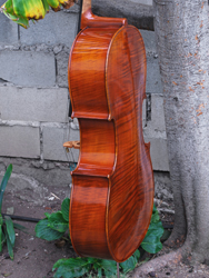 Vivo 'Prelude' Superior - 4/4 Cello (a)