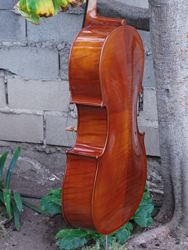 Vivo 'Prelude' Superior - 4/4 Cello (b)