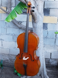 Vivo Zetoni model 100 4/4 Cello