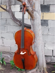 Werner Master Cello