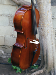Wu Ling model 100 4/4 Cello (a)