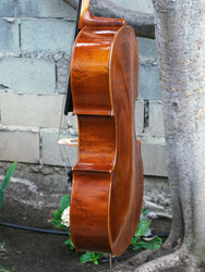 Wu Ling model 100 4/4 Cello (c)