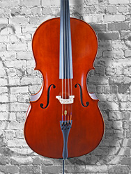 Wu Ling model 150 4/4 Cello