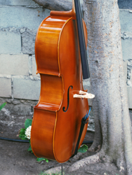 Wu Ling model 150 4/4 Cello (b)