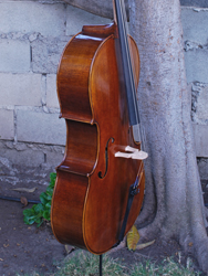Wu Ling model 200 4/4 Cello