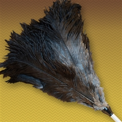 "Aluminum handled extension duster. Full duster including head extends from 22"" to 29 with a black ostrich feather head 10"" in length (NON-detachable)"