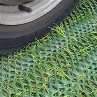 GrassProtecta Grass Reinforcement Mesh - 6.56' x 32.8' Roll - 215 Sq. Ft. - Heavy Grade