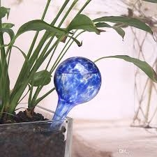 Water Globes As Seen on TV plant watering bulbs