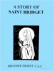 A Story of Saint Bridget, In the Footsteps of the Saints Series